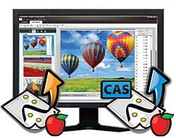 TI Nspire & TI Nspire CAS Teacher Software – Volume Licenses - Electronic  Delivery of 5 or more